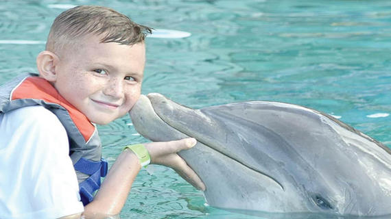 Gavin playing with dolphin