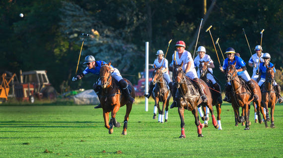 Seven riders wearing royal blue or white Make-A-Wish jerseys and carrying long wooden mallets ride galloping horses across a green field as they play a charity game of polo.