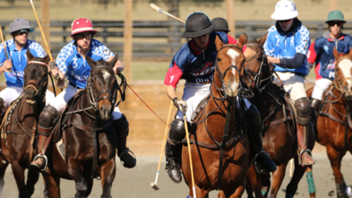 Arena Polo being played